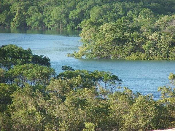 Ministério Público recomenda programa de educação ambiental na Coroa do Meio