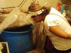 Aracaju tem menor índice de infestação de mosquito em oito anos