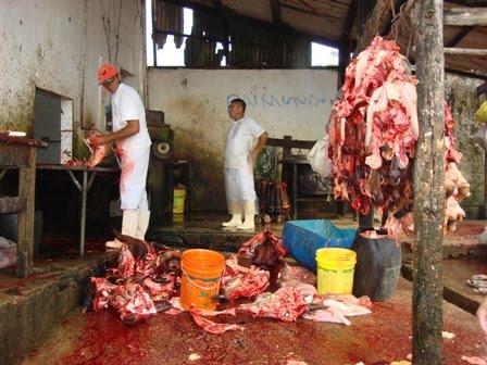 Justiça do Trabalho obriga Prefeitura de Itaporanga d'Ajuda a cumprir obrigações de saúde e segurança